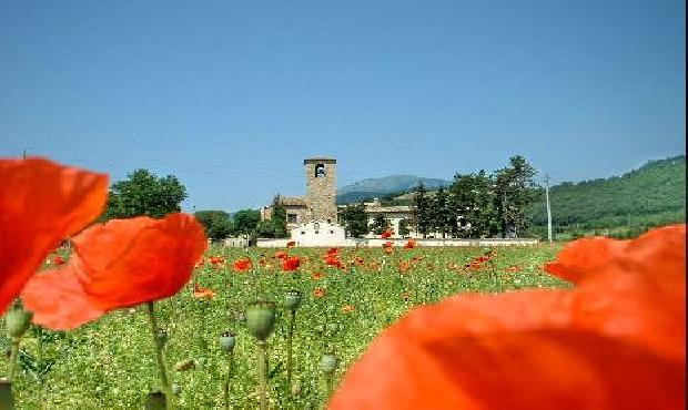 Matrimonio Spiaggia Pesaro : Matrimoni marche location per e ricevimenti